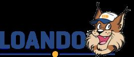 Loando online loans comparison website